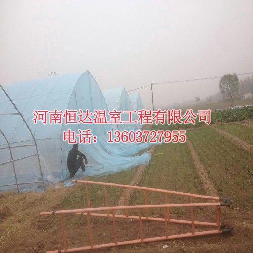 蔬菜大棚建造厂家
