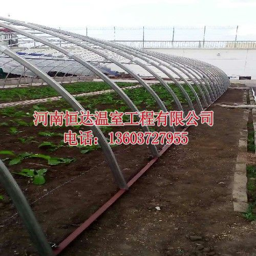 建蔬菜大棚