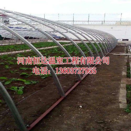农用蔬菜大棚