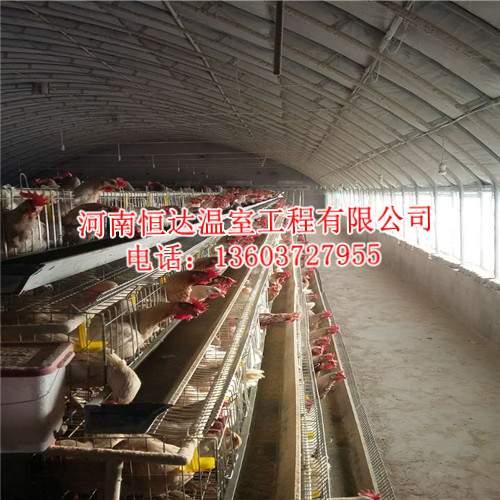 温室养鸡大棚
