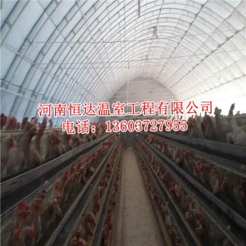 养殖大棚图片