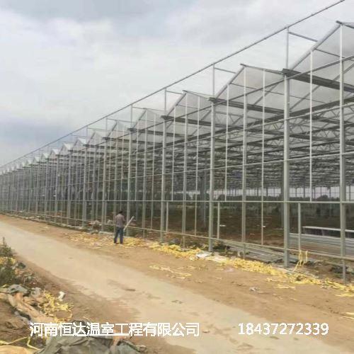 建设日光温室