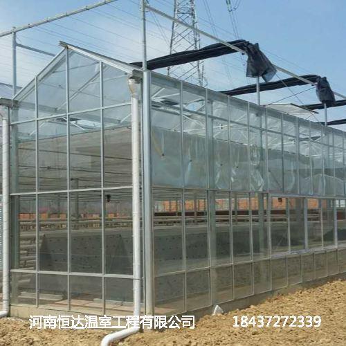 日光温室厂家