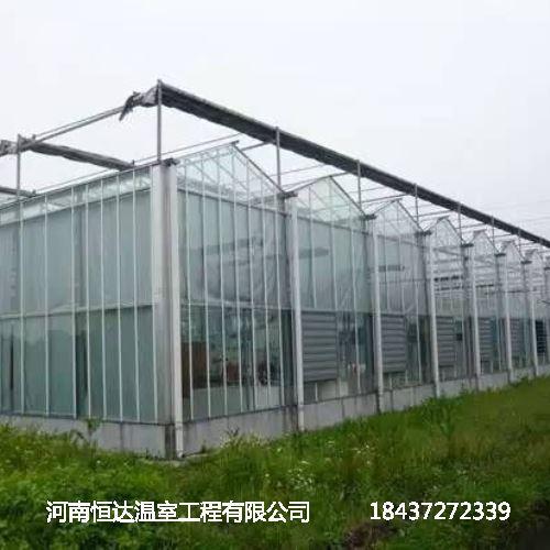 玻璃连栋大棚