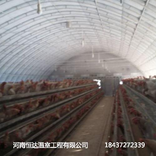 鸭子养殖大棚