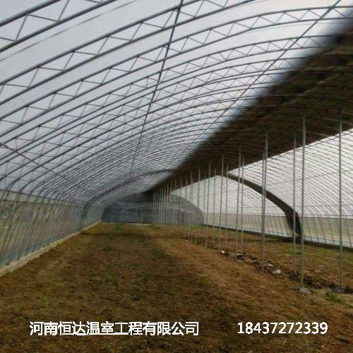 单屋面温室