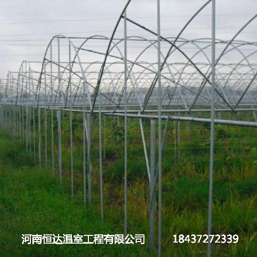 温室大棚骨架种植