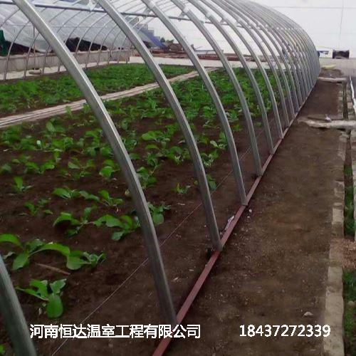 蔬菜大棚骨架