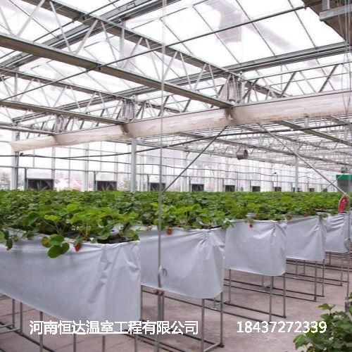 供应温室蔬菜大棚