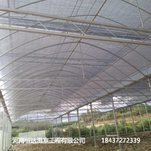 专业温室大棚设计