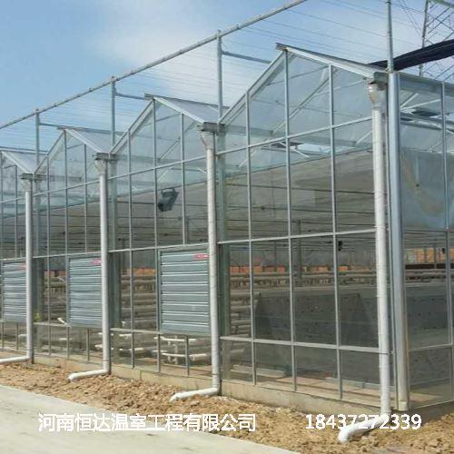 玻璃温室大棚厂家