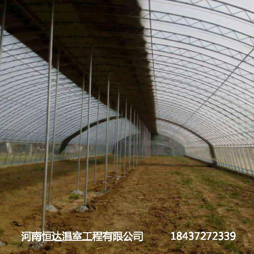 温室大棚建造成本