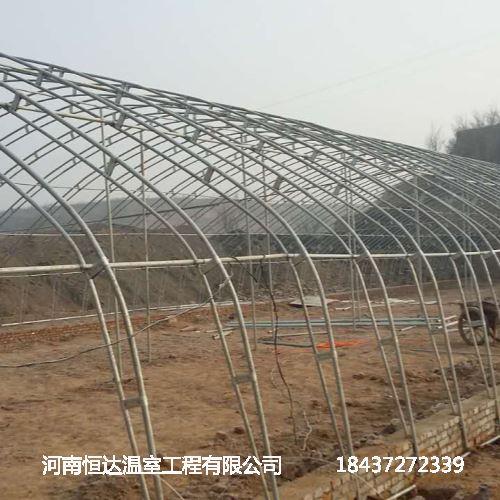 冬暖式蔬菜大棚建设