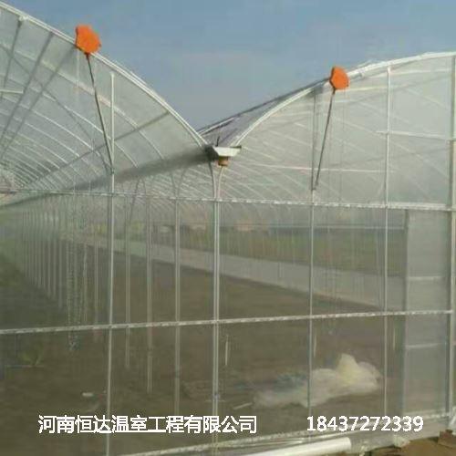 玻璃温室大棚公司