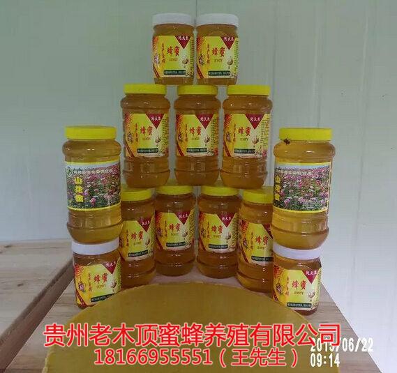 贵州土蜂蜜出售