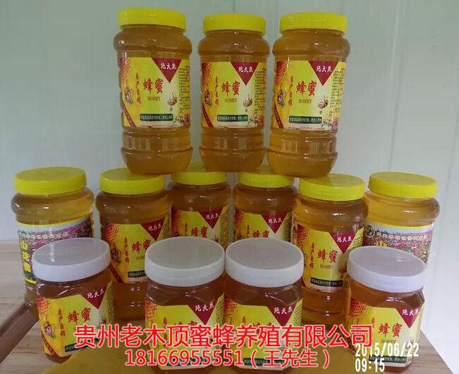 铜仁土蜂蜜出售