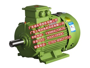 YE3电机标准