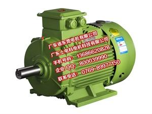 YE3电机效率