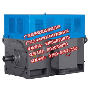 高压同步电机