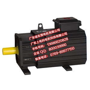 GT系列交流永磁伺服电机