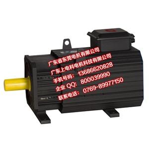 压铸机永磁伺服同步电动机