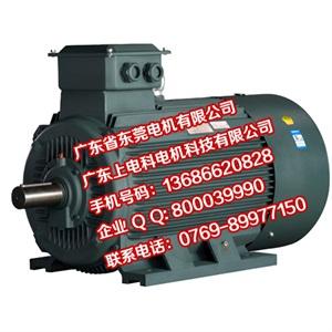 YE2高效率三相异步电动机技术条件