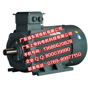 YE2節能電機