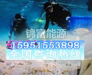 【热】水下堵漏 水下堵漏工程