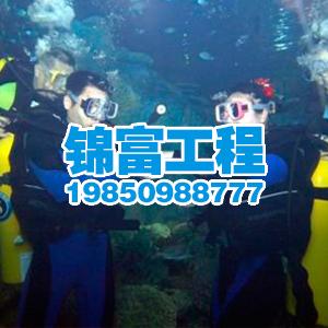 高清水下攝像