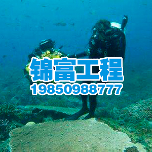 水下檢測公司