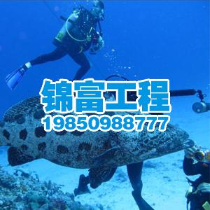 龍富潛水作業