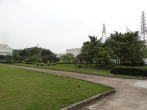 无锡绿化工程