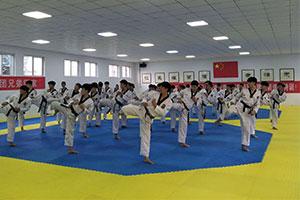 安阳跆拳道加盟