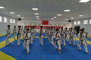 跆拳道培训加盟