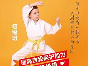 安阳跆拳道初级班