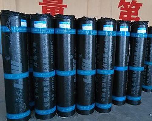 安阳SBS防水卷材厂家