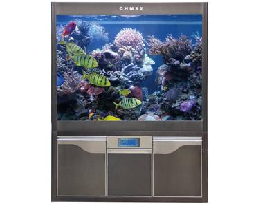 【图文】如何清洗水族箱中的珊瑚石_家庭养鱼的好处
