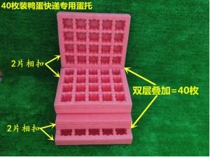 Duck egg tray manufacturer
