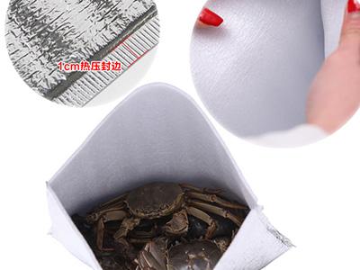 Disposable aluminum foil insulation bag