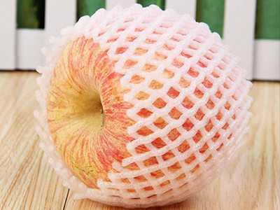 Fruit net cover