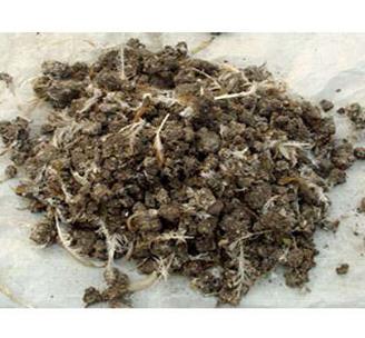石家庄发酵有机肥