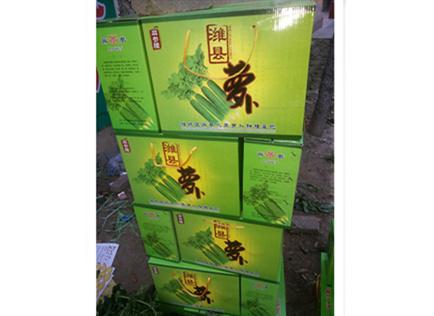 甘肃潍县萝卜品质优良|瓜茬萝卜|价格