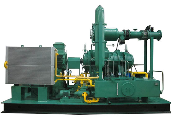 蒸汽型螺杆膨胀发电站