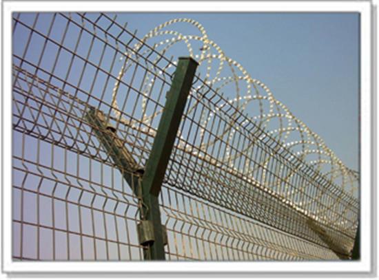 成都刺绳防护网