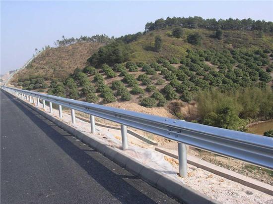 成都公路防护网