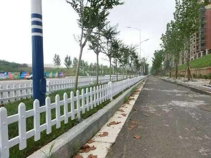 塑钢草坪护栏价格