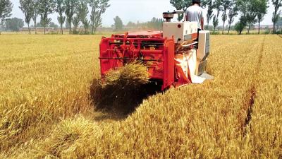 水稻打捆机