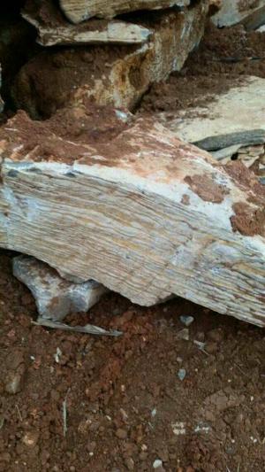 此开采过的山东驳岸石其质量都是非常的高,硬度非常的好,非常适