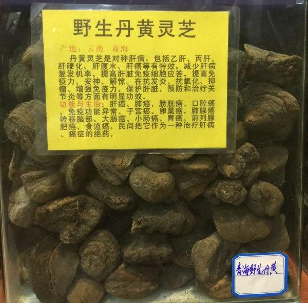 广东灵芝供货商