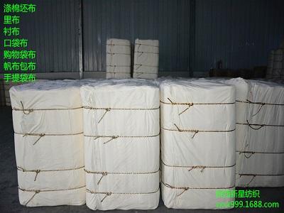 陕西涤棉坯布